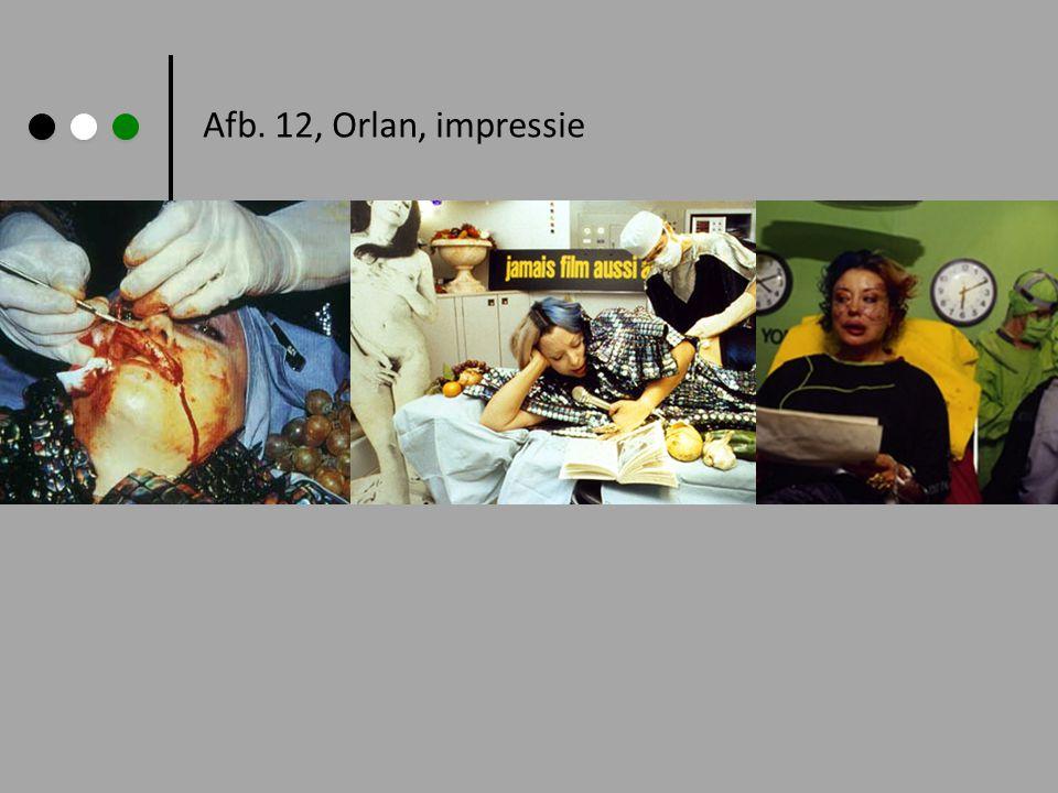 Afb. 12, Orlan, impressie
