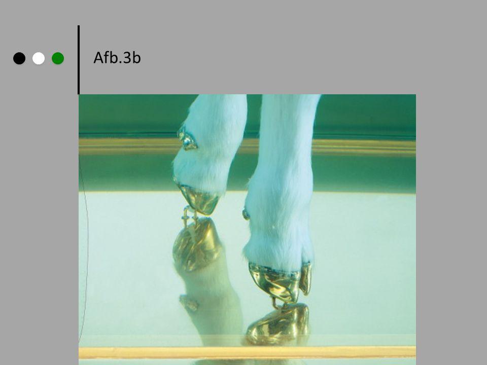 Afb.3b Damien Hirst: Gouden Kalf,