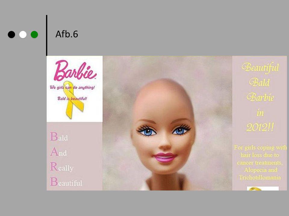 Afb.6
