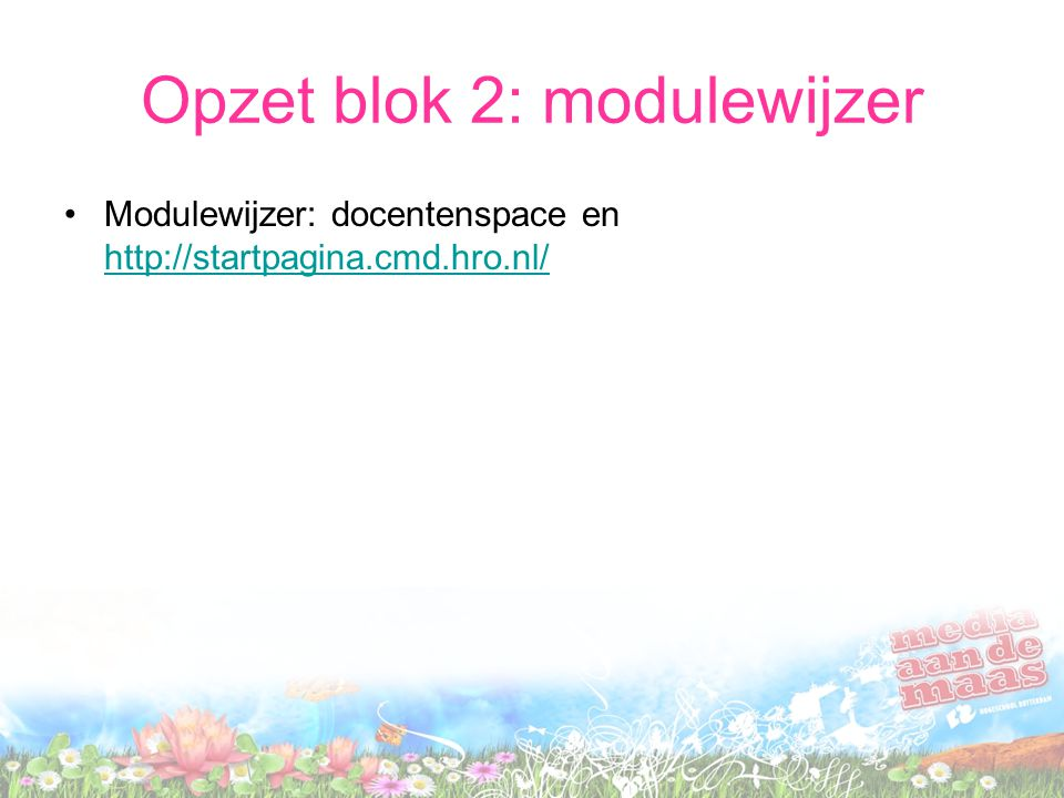 Opzet blok 2: modulewijzer