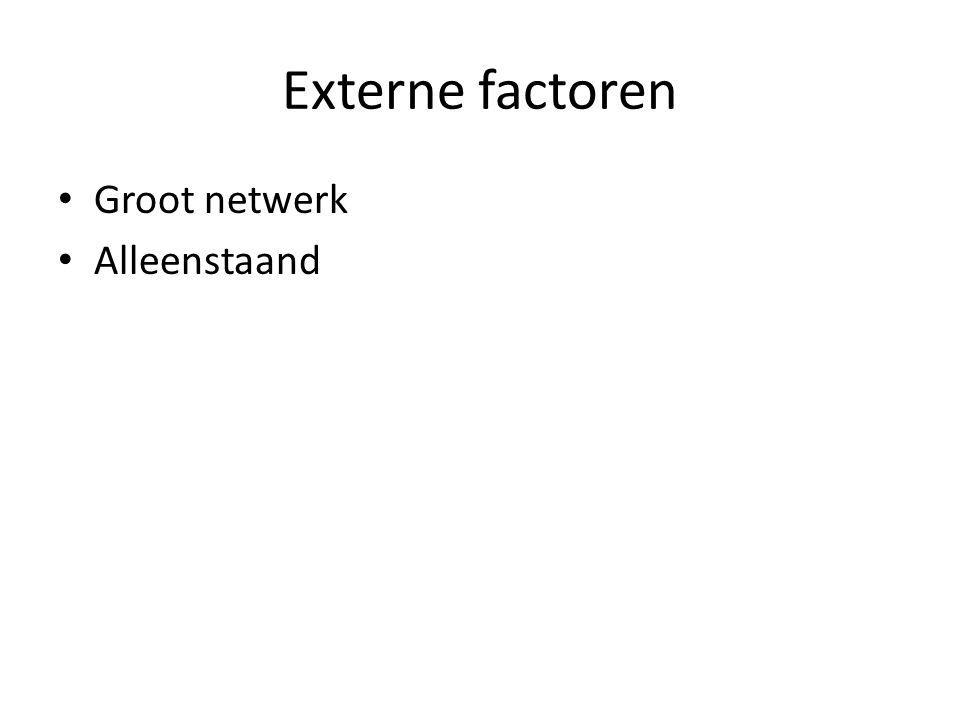 Externe factoren Groot netwerk Alleenstaand