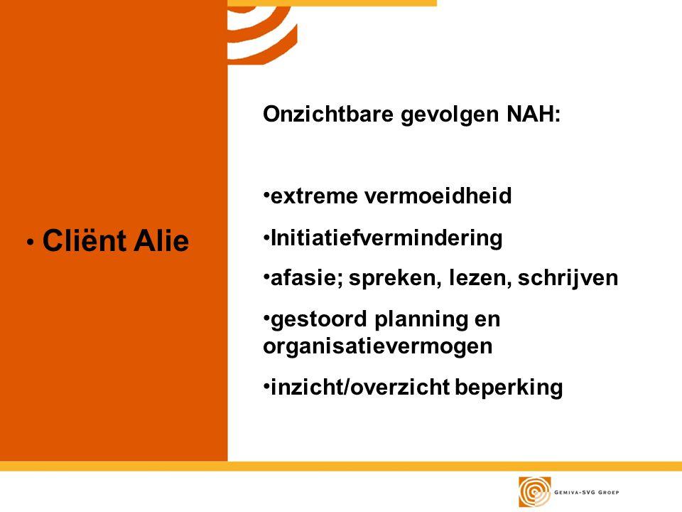 Cliënt Alie Onzichtbare gevolgen NAH: extreme vermoeidheid