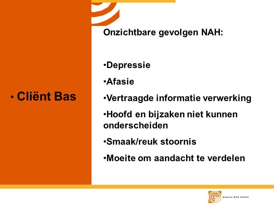 Cliënt Bas Onzichtbare gevolgen NAH: Depressie Afasie