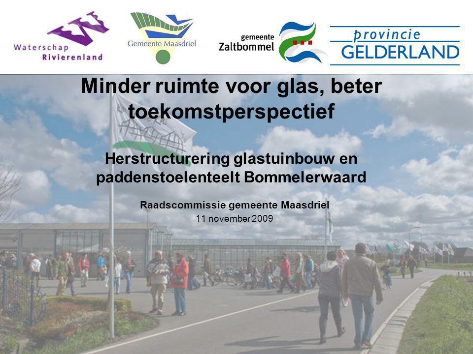 Raadscommissie gemeente Maasdriel 11 november 2009