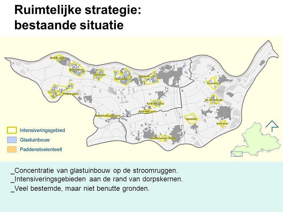 Ruimtelijke strategie: bestaande situatie