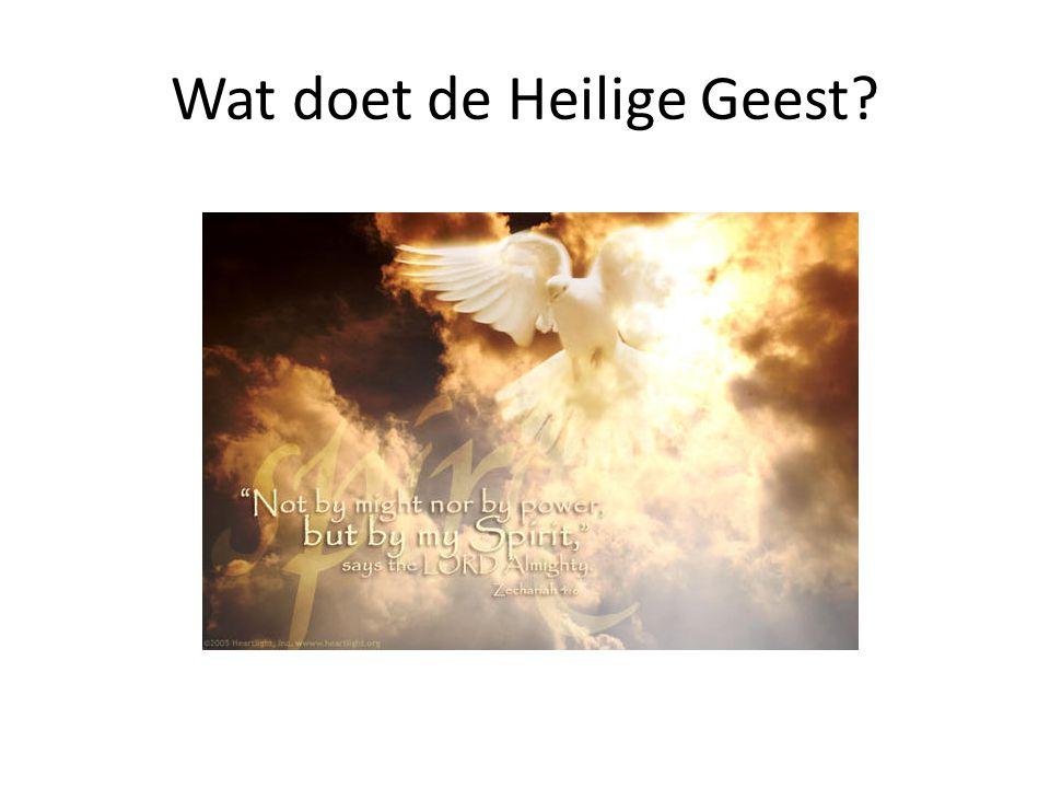 Wat doet de Heilige Geest