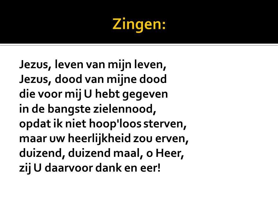Zingen: