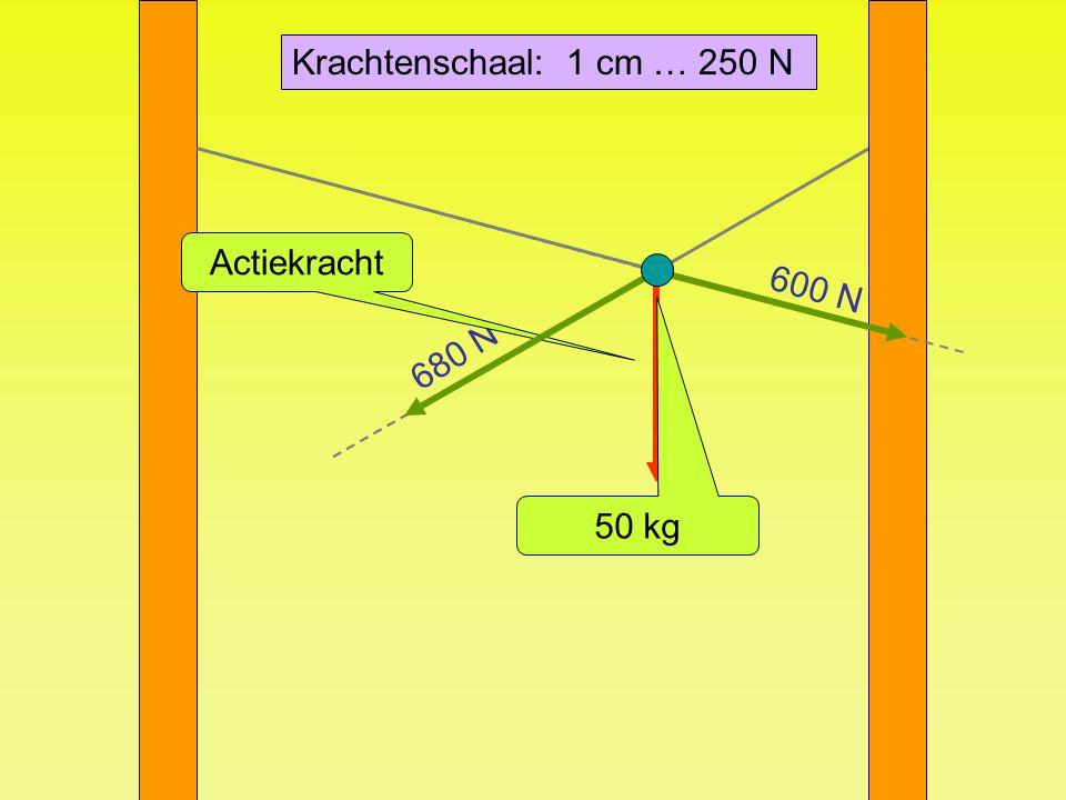 Krachtenschaal: 1 cm … 250 N Actiekracht 600 N 680 N 50 kg 500 N