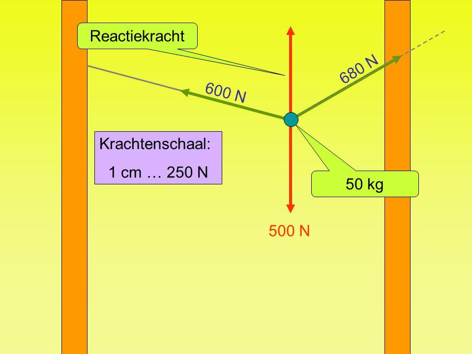 Reactiekracht 680 N 600 N Krachtenschaal: 1 cm … 250 N 50 kg 500 N
