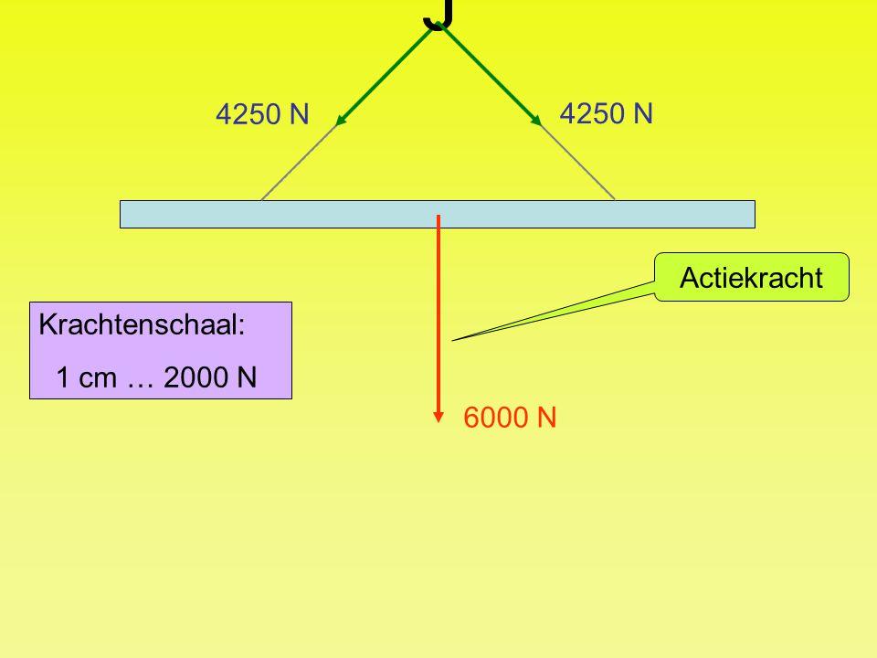 4250 N 4250 N Actiekracht Krachtenschaal: 1 cm … 2000 N 6000 N