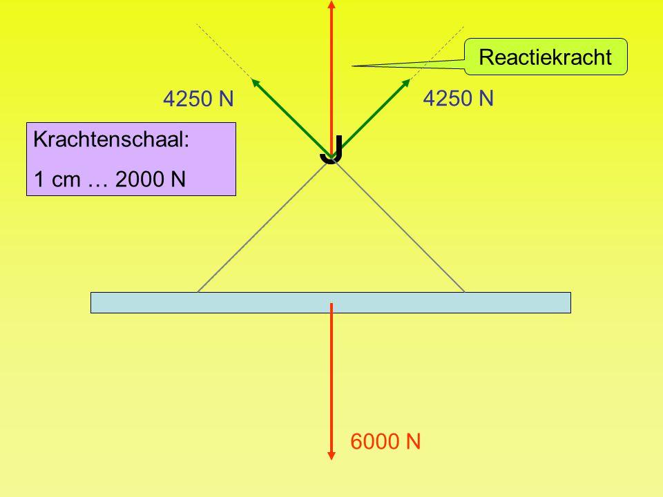 Reactiekracht 4250 N 4250 N Krachtenschaal: 1 cm … 2000 N 6000 N