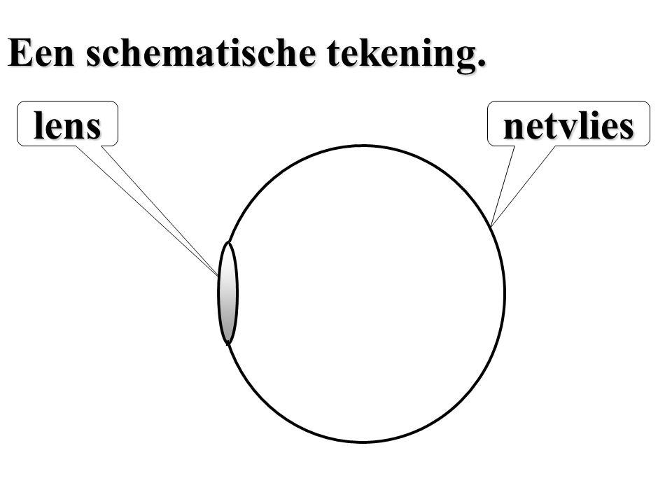 Een schematische tekening.