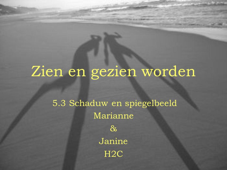 5.3 Schaduw en spiegelbeeld Marianne & Janine H2C