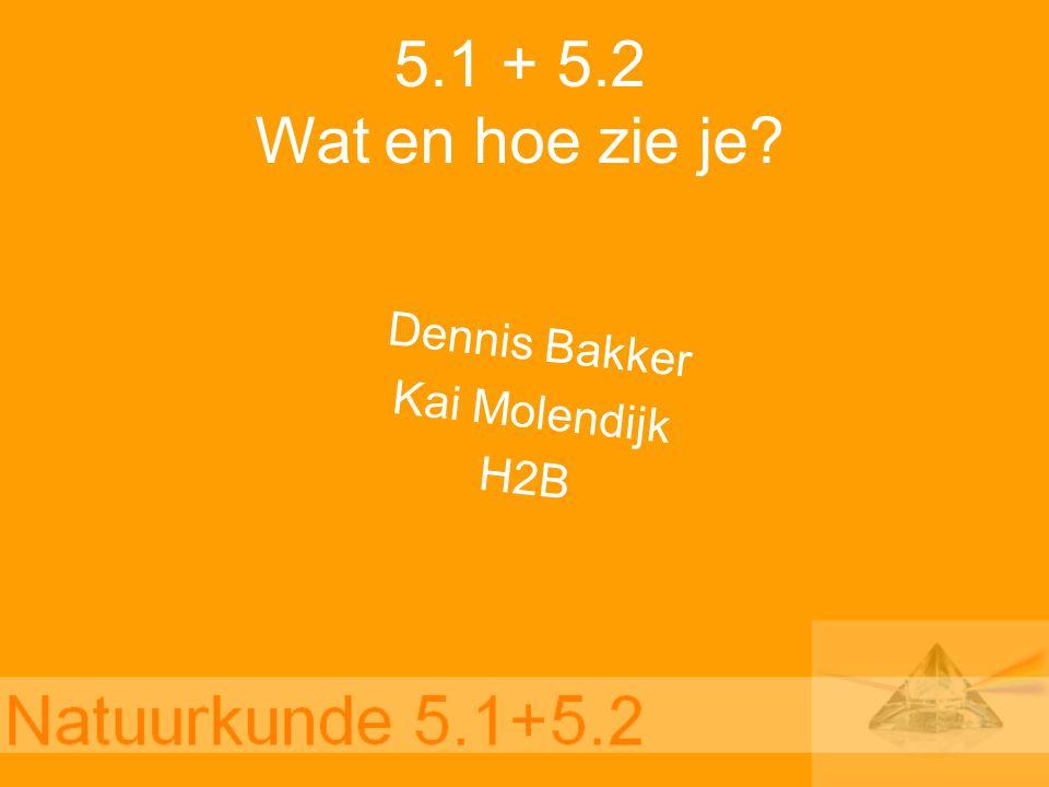 Dennis Bakker Kai Molendijk H2B