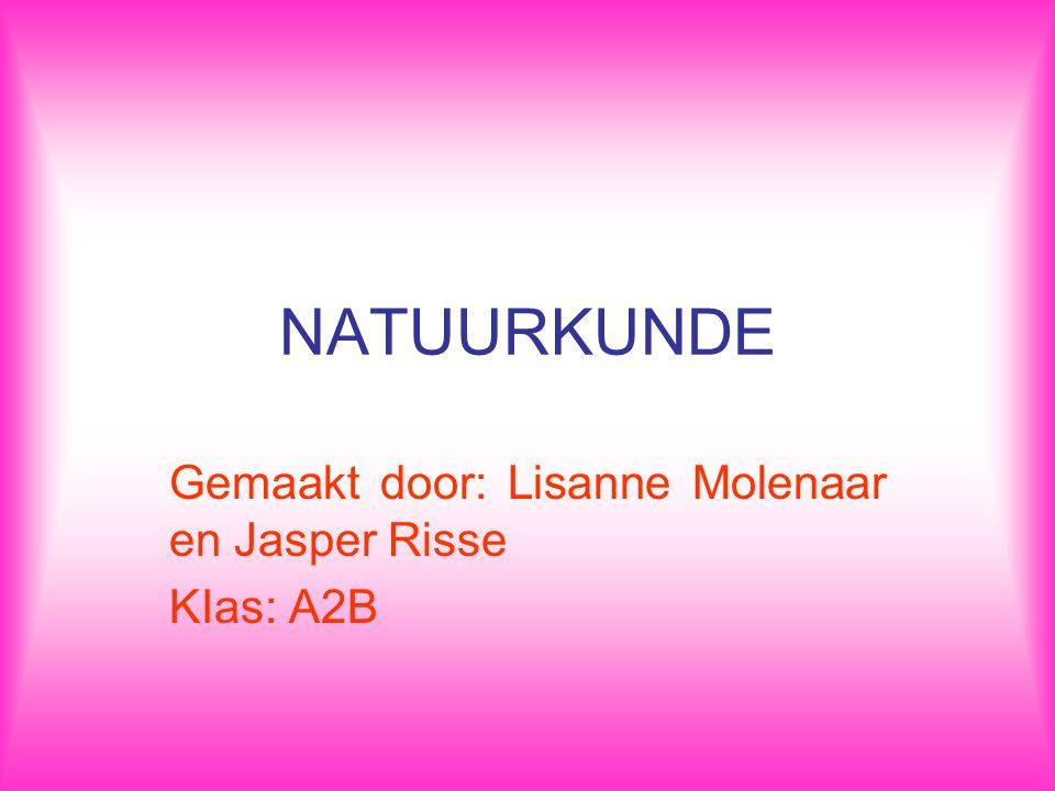 Gemaakt door: Lisanne Molenaar en Jasper Risse KIas: A2B