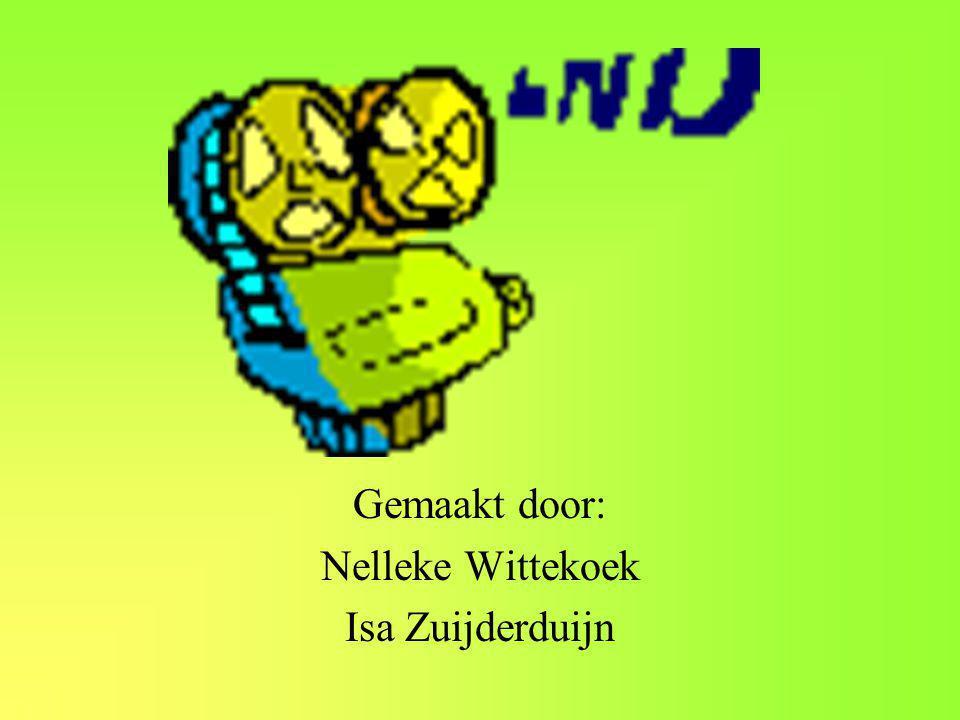 Gemaakt door: Nelleke Wittekoek Isa Zuijderduijn