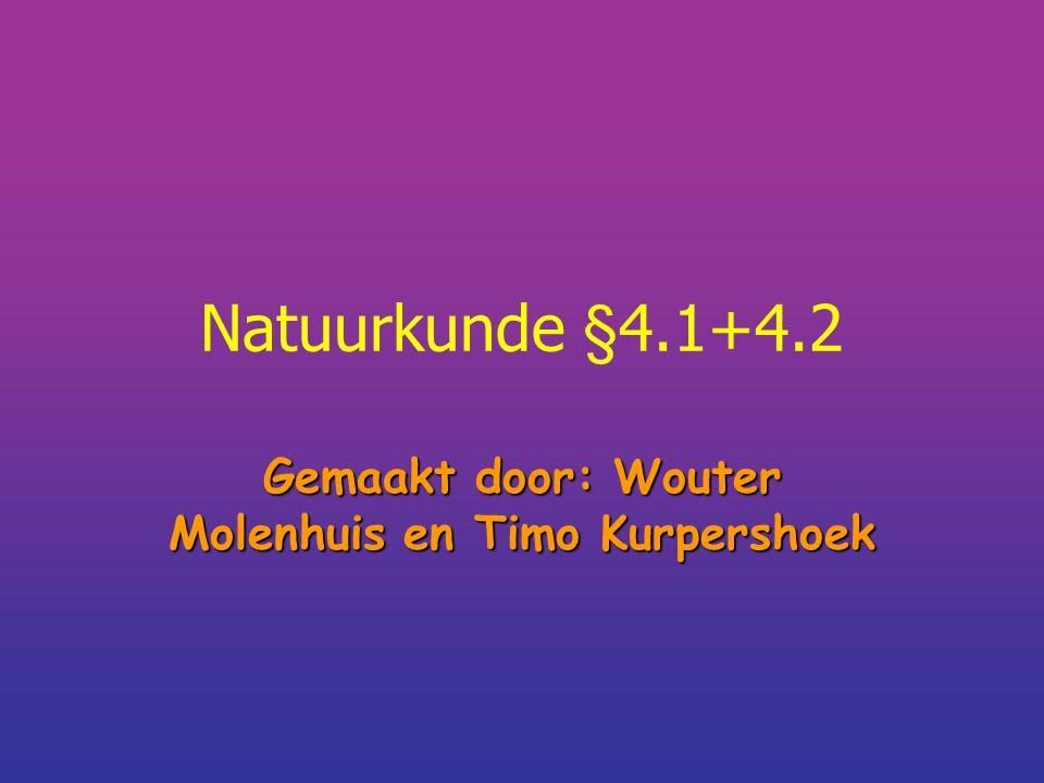 Gemaakt door: Wouter Molenhuis en Timo Kurpershoek