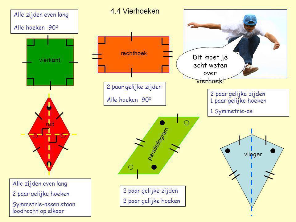 Dit moet je echt weten over vierhoek!