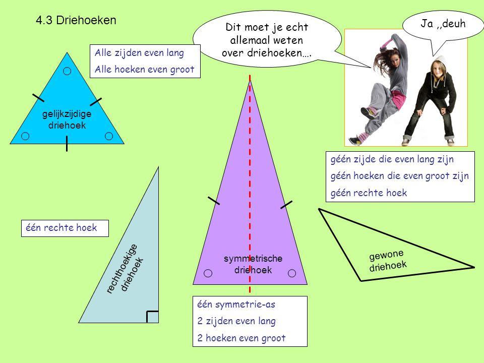 4.3 Driehoeken Dit moet je echt allemaal weten over driehoeken…. Ja ,,deuh. Alle zijden even lang.