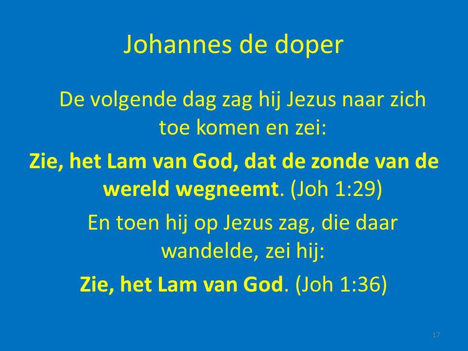 Johannes de doper De volgende dag zag hij Jezus naar zich toe komen en zei: Zie, het Lam van God, dat de zonde van de wereld wegneemt. (Joh 1:29)