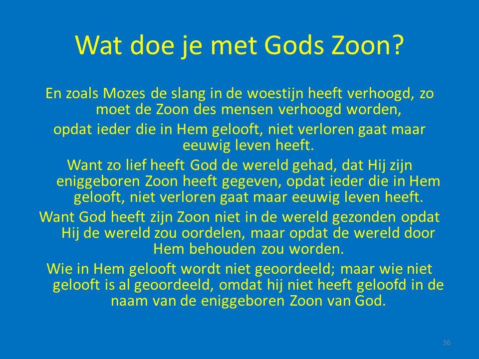 Wat doe je met Gods Zoon En zoals Mozes de slang in de woestijn heeft verhoogd, zo moet de Zoon des mensen verhoogd worden,