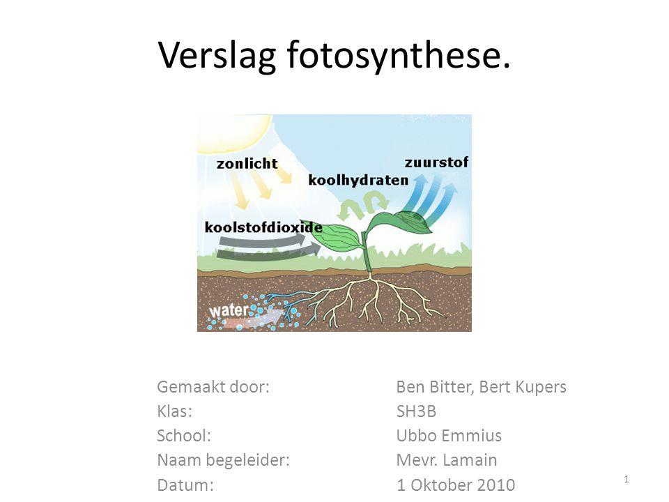 Verslag fotosynthese. Gemaakt door: Ben Bitter, Bert Kupers Klas: SH3B