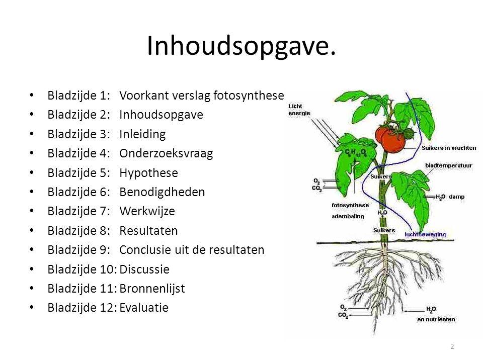 Inhoudsopgave. Bladzijde 1: Voorkant verslag fotosynthese