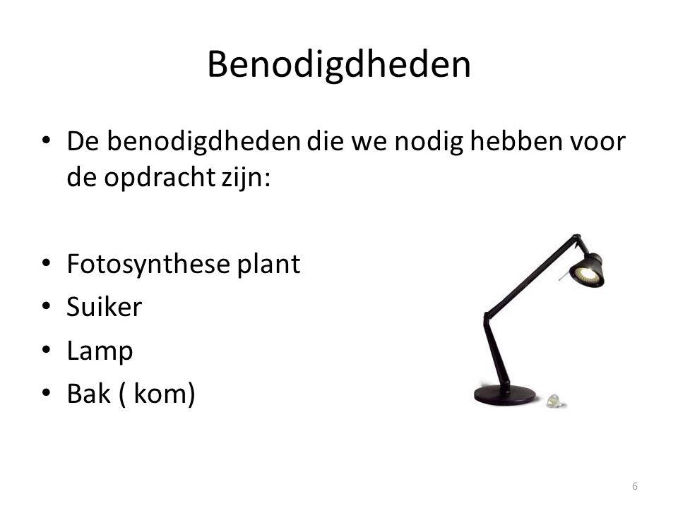 Benodigdheden De benodigdheden die we nodig hebben voor de opdracht zijn: Fotosynthese plant. Suiker.
