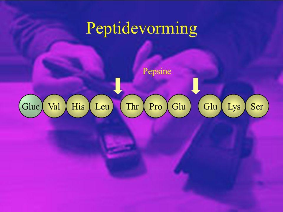 Peptidevorming Pepsine Gluc Val His Leu Thr Pro Glu Glu Lys Ser