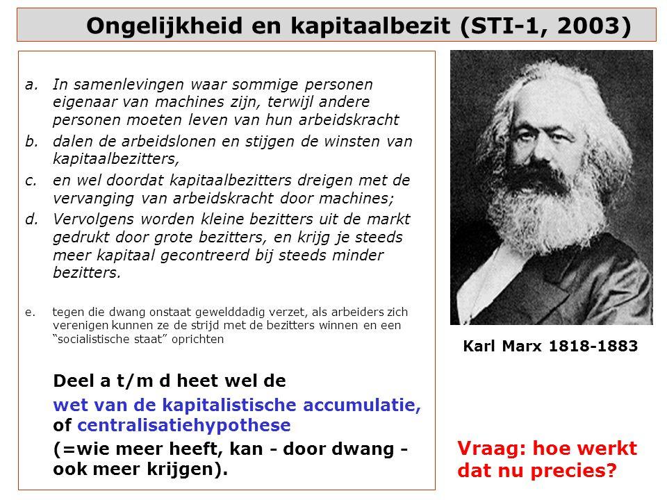 Ongelijkheid en kapitaalbezit (STI-1, 2003)