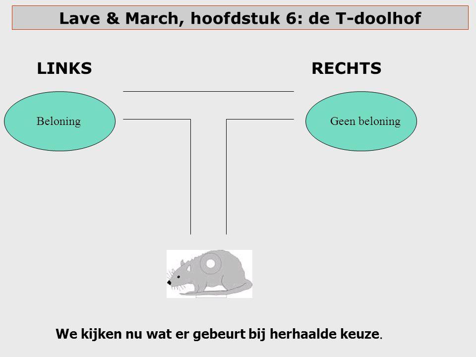 Lave & March, hoofdstuk 6: de T-doolhof