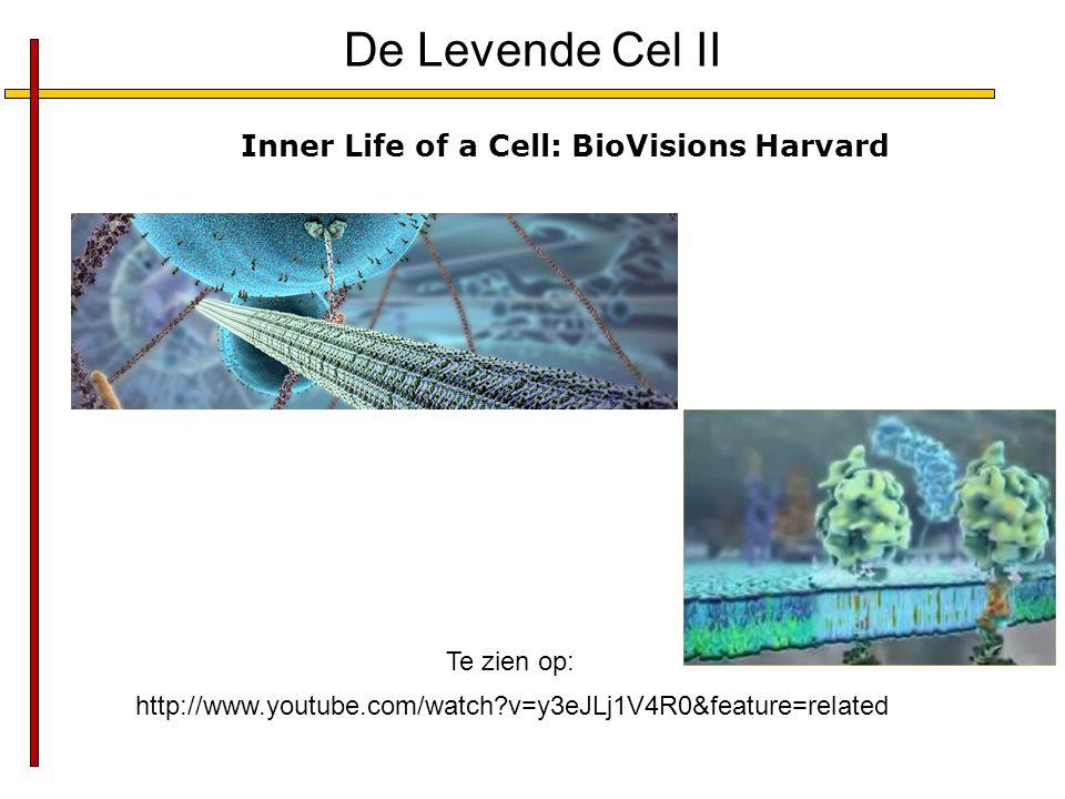 De Levende Cel II Inner Life of a Cell: BioVisions Harvard Te zien op: