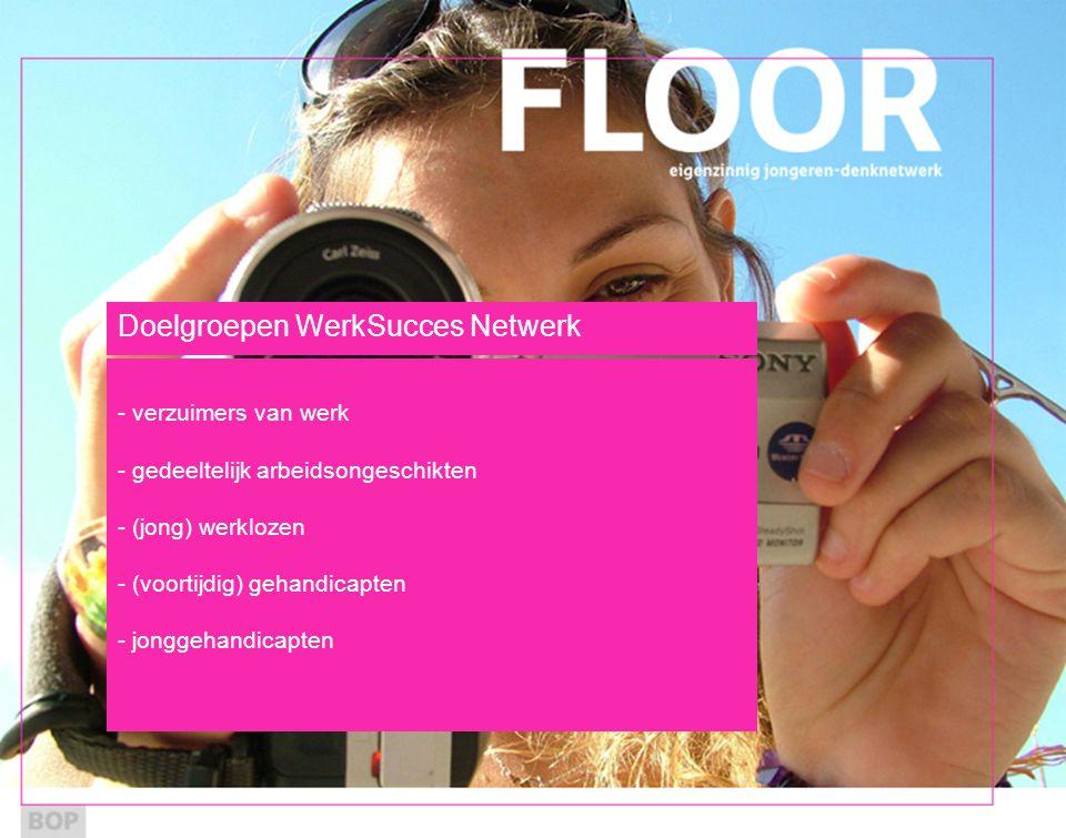 Doelgroepen WerkSucces Netwerk