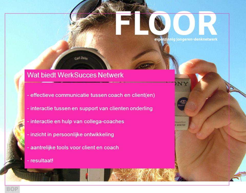 Wat biedt WerkSucces Netwerk