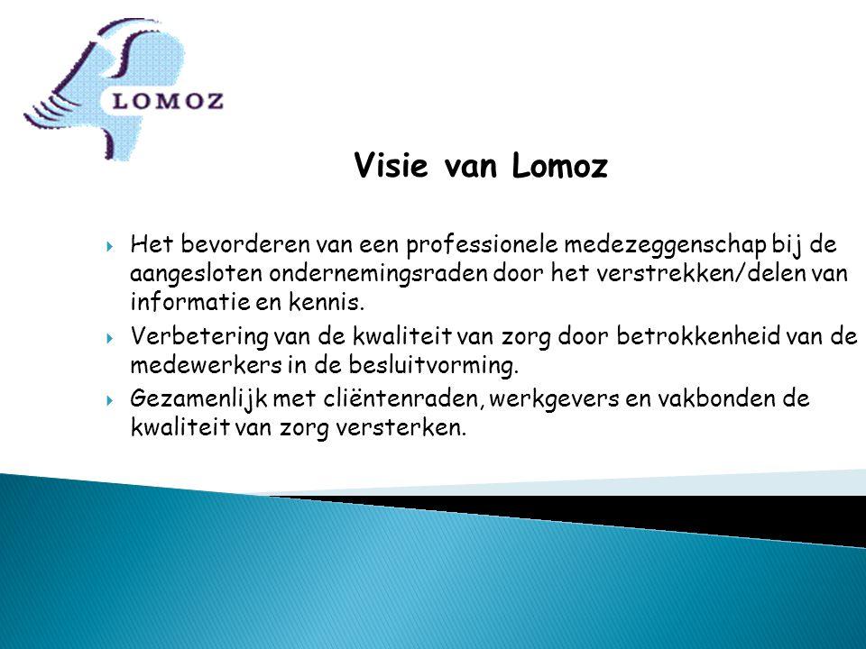 Visie van Lomoz