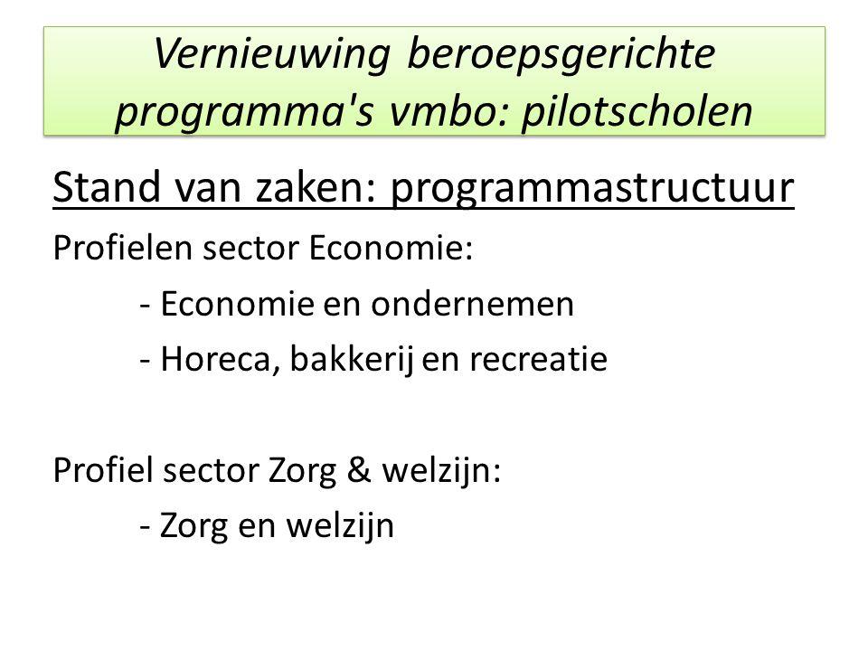 Vernieuwing beroepsgerichte programma s vmbo: pilotscholen