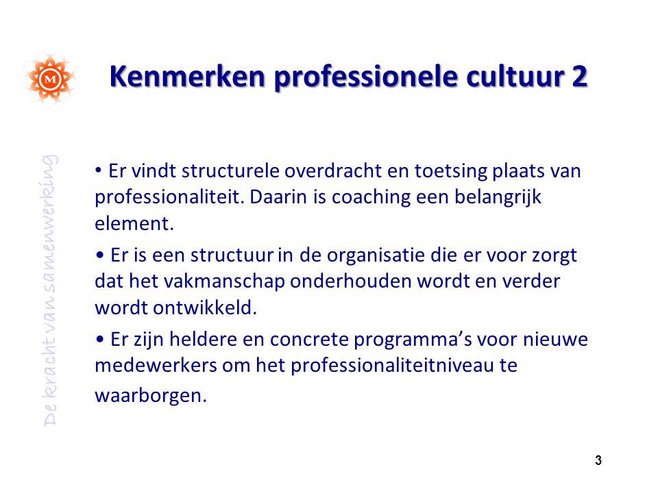 Kenmerken professionele cultuur 2