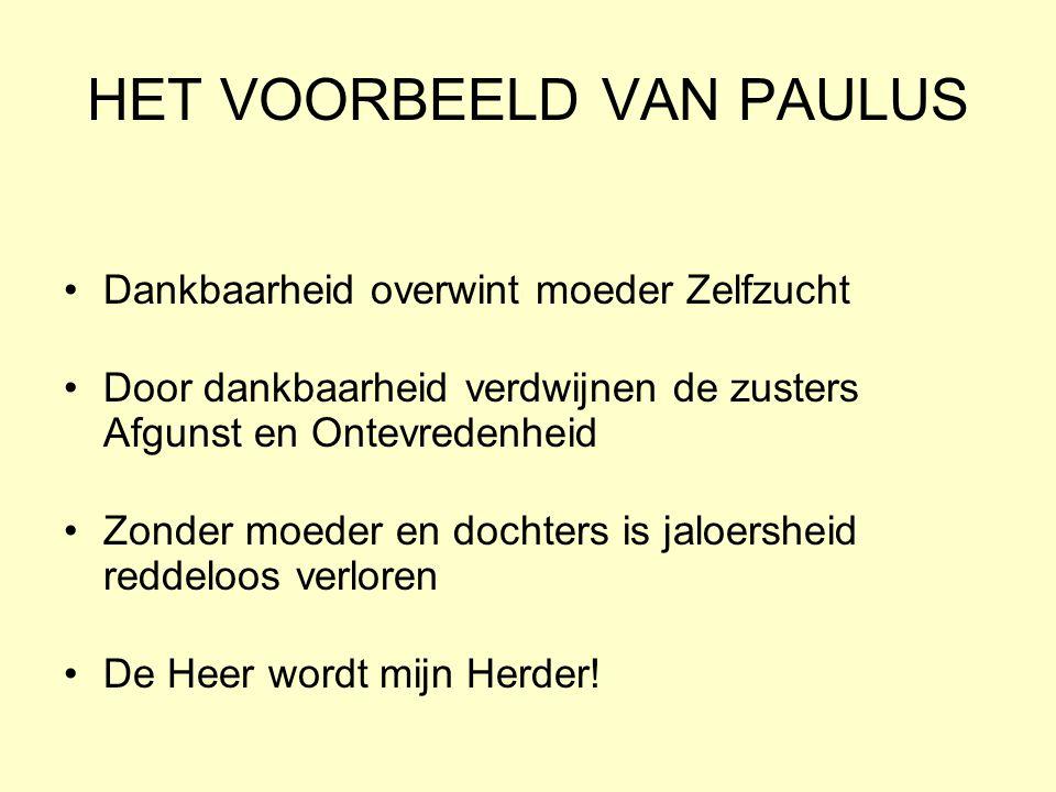 HET VOORBEELD VAN PAULUS
