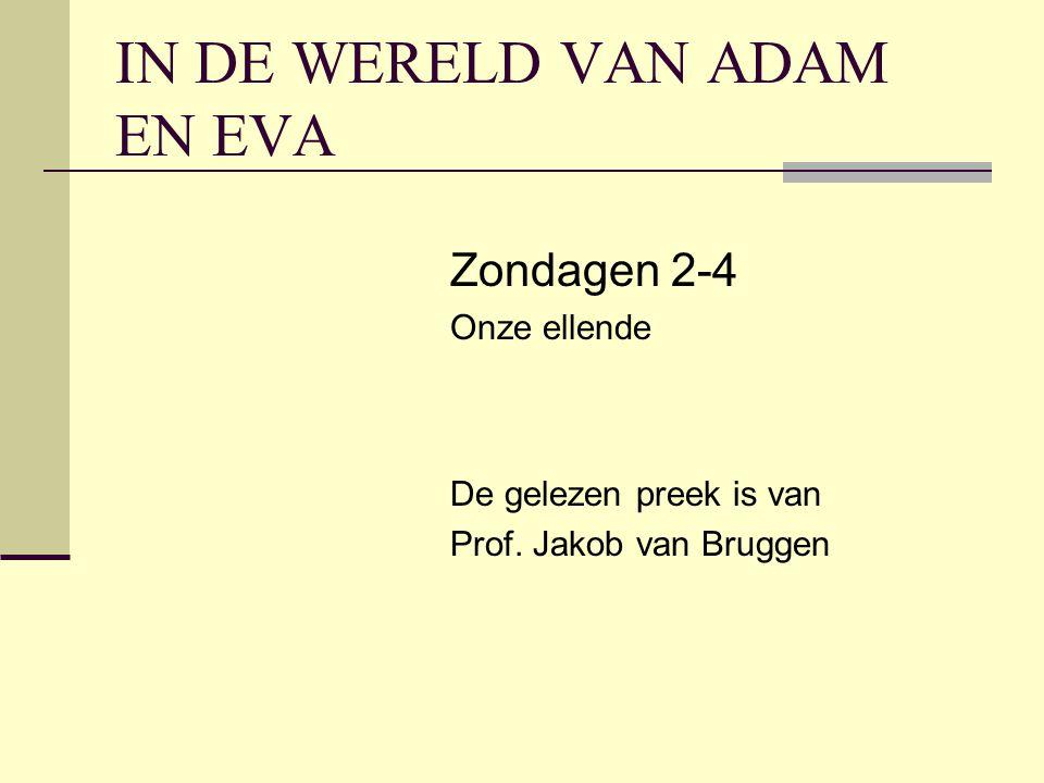 IN DE WERELD VAN ADAM EN EVA