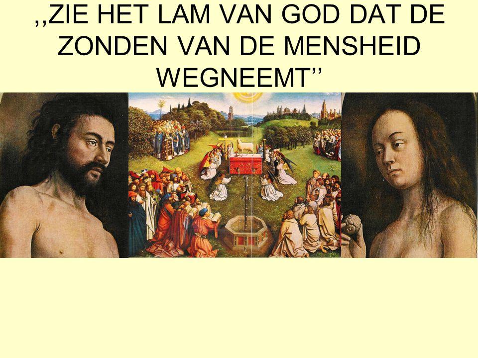 ,,ZIE HET LAM VAN GOD DAT DE ZONDEN VAN DE MENSHEID WEGNEEMT''