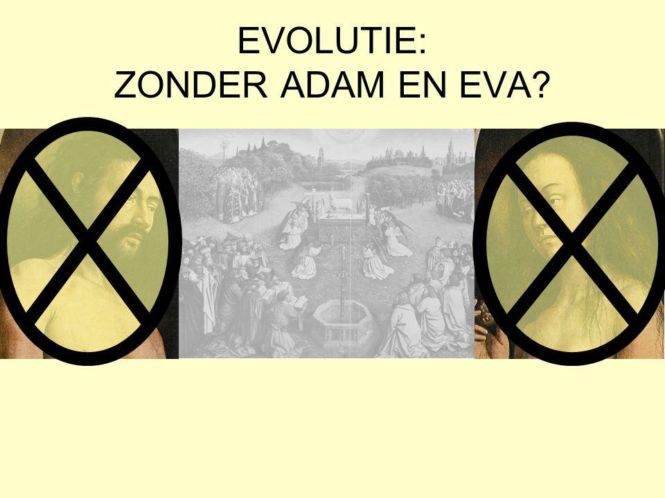 EVOLUTIE: ZONDER ADAM EN EVA