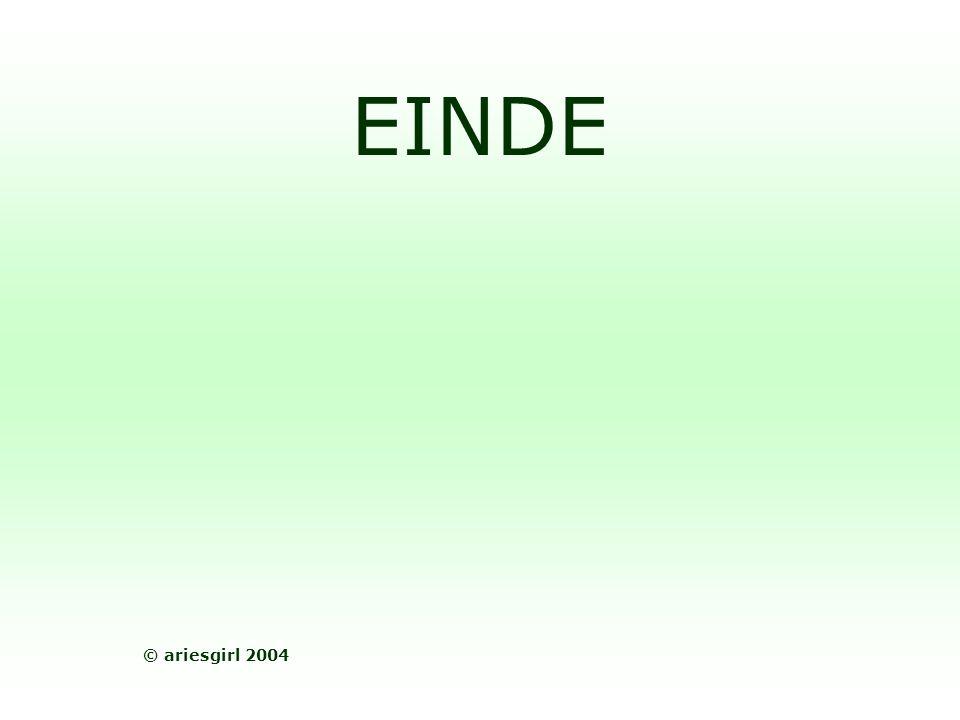 EINDE © ariesgirl 2004