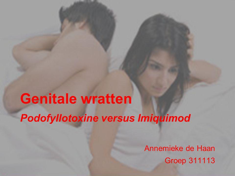 Podofyllotoxine versus Imiquimod Annemieke de Haan Groep 311113