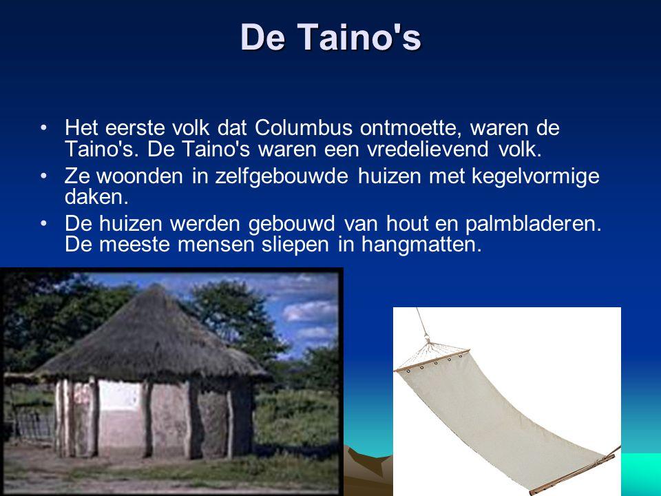 De Taino s Het eerste volk dat Columbus ontmoette, waren de Taino s. De Taino s waren een vredelievend volk.