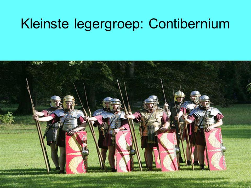 Kleinste legergroep: Contibernium
