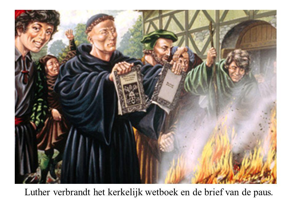 Luther verbrandt het kerkelijk wetboek en de brief van de paus.