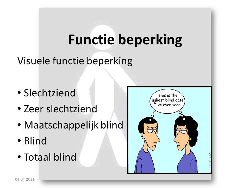 Functie beperking Visuele functie beperking Slechtziend