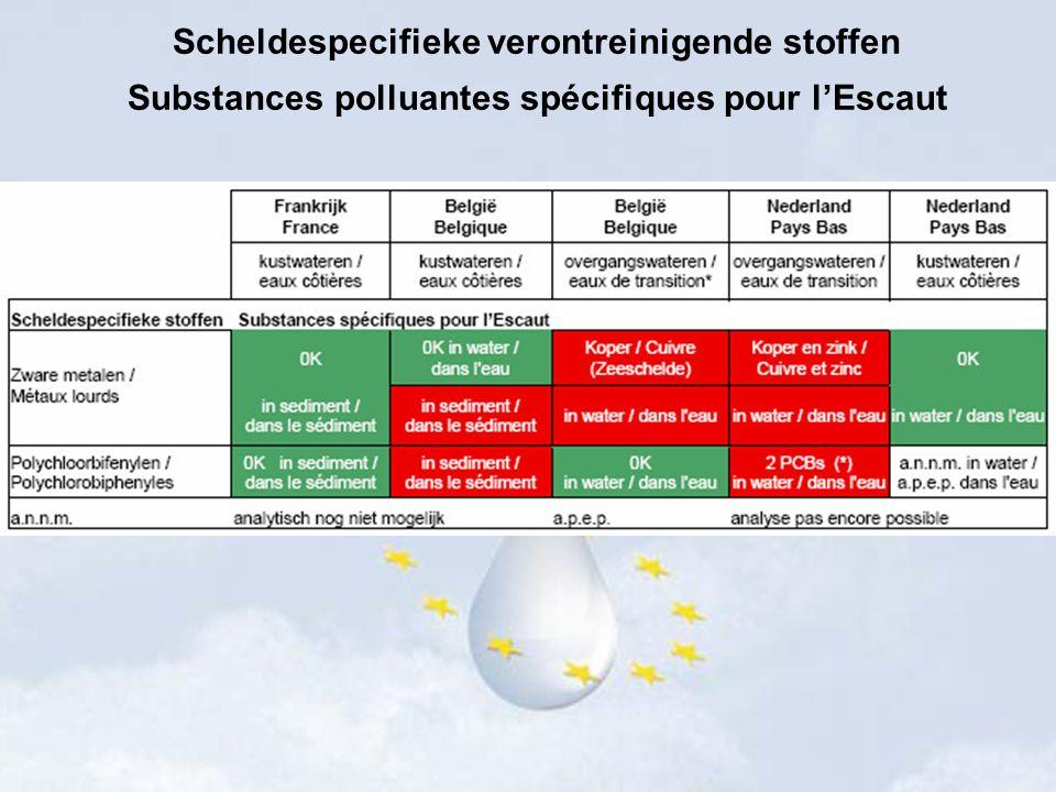 Scheldespecifieke verontreinigende stoffen
