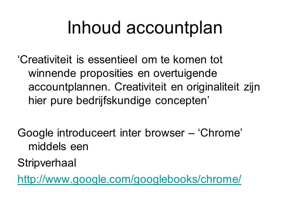 Inhoud accountplan