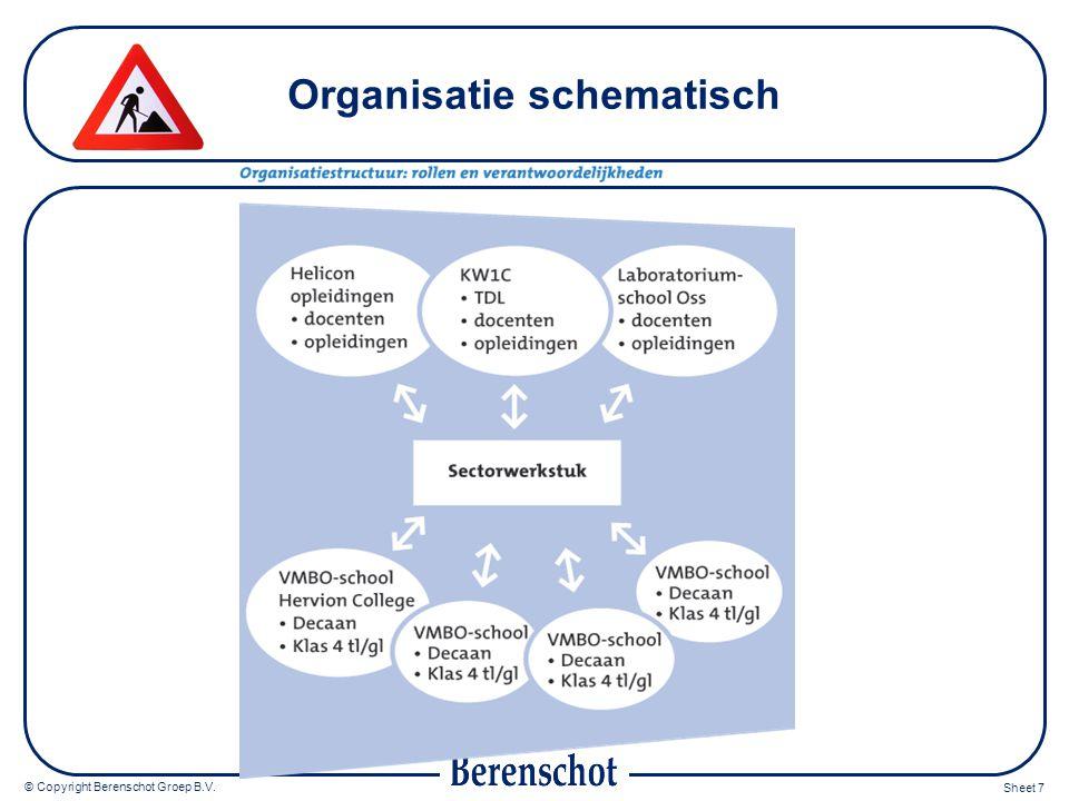Organisatie schematisch
